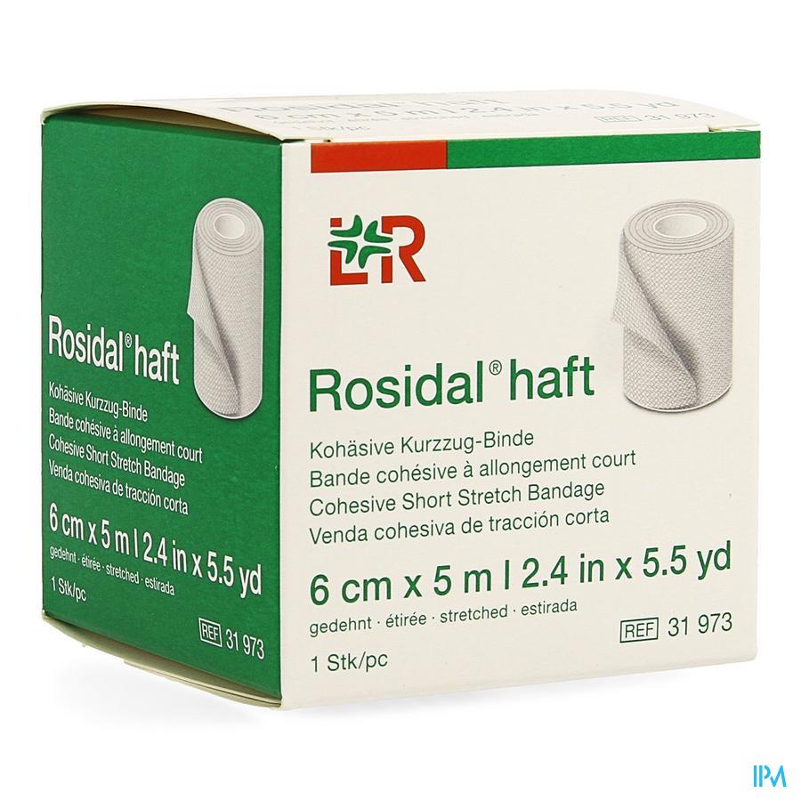 Rosidal Haft Bande Cohesive 6cmx5m 1 31973